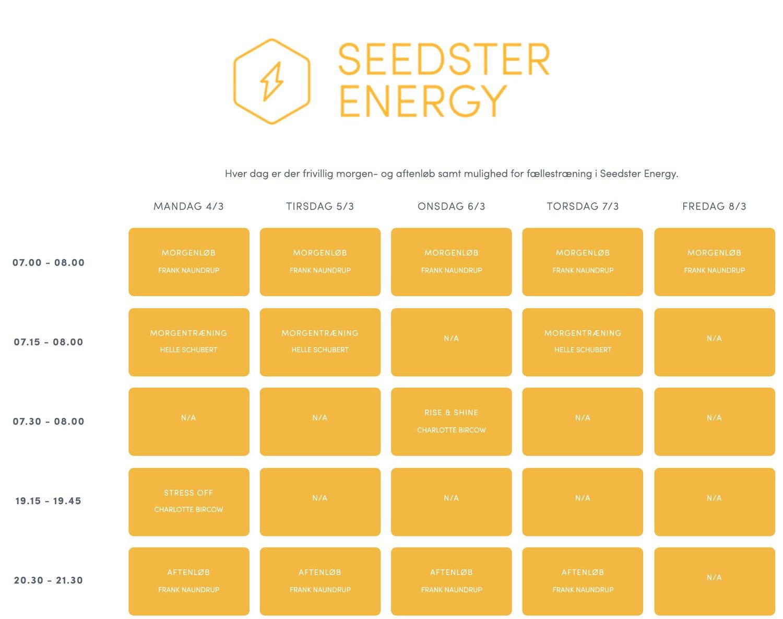 seedster-energy-4.jpg